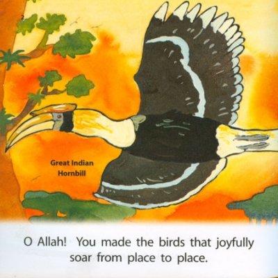 画像1: Allah Made Them All : Birds とり 【日本語訳あり】