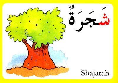 画像3: Arabic Alphabet Flash Cards アラビア語アルファベット・カード